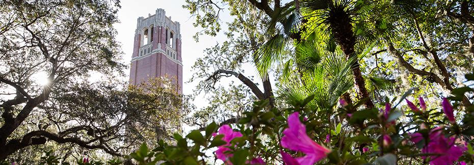 Century Tower -- UF Campus
